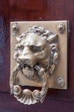 Door NOB. Lion bras doorknocker on wood door Stock Images