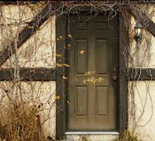 Door with overgrowth Royalty Free Stock Images