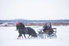 Door paarden getrokken kar op sneeuw Royalty-vrije Stock Afbeeldingen