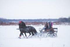 Door paarden getrokken kar op sneeuw Royalty-vrije Stock Fotografie