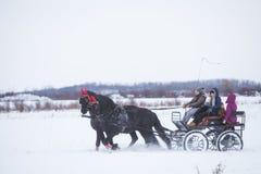 Door paarden getrokken kar op sneeuw Stock Fotografie