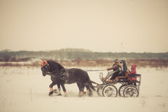 Door paarden getrokken kar op sneeuw Royalty-vrije Stock Foto's