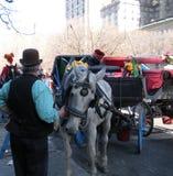Door paarden getrokken Vervoer, Central Park, de Stad van New York, NY, de V.S. Royalty-vrije Stock Fotografie