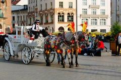 Door paarden getrokken vervoer in Krakau Royalty-vrije Stock Afbeelding