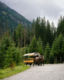 Door paarden getrokken vervoer op bergweg Stock Fotografie