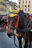 Door paarden getrokken vervoer in Rome Royalty-vrije Stock Foto's
