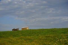Door paarden getrokken wagen op de weide stock foto