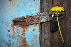 Door with a padlock. Closed the door with a padlock Royalty Free Stock Photo