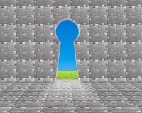 Door on puzzles wall with Key hole shape and green meadow and bl Stock Photo