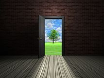 Door in the room Royalty Free Stock Photos