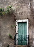 Beautiful door. Green door, in a smalle village in the south of france Stock Image