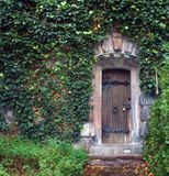 Door in a stone wall. Wooden door in a stone wall is surrounded by green foliage Royalty Free Stock Images