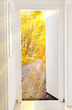 Door to autumn. Abstract photo of a door in to autumn forest Royalty Free Stock Photos
