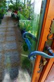 Tropical glass greenhouse entrance door Stock Photo
