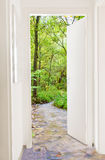 Door to green forest. Abstract photo of a open door in to green forest with little river Stock Photo
