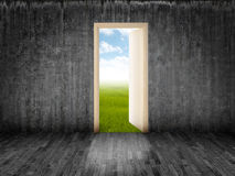 The door to heaven. The white door open on luminous field Stock Images
