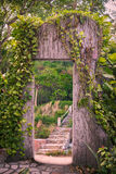 Door-to-nature tree Royalty Free Stock Image