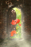 Door to new world. Royalty Free Stock Images