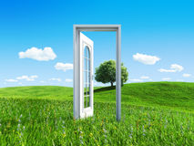 Door to success on green meadow 1 tree royalty free stock photo