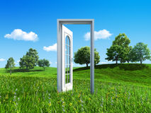 Door to success on green meadow Royalty Free Stock Photo