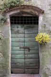 Door in Tuscany, Italy Royalty Free Stock Images