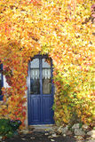 Door with vegetation Royalty Free Stock Images