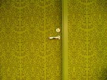 Door and wall. Green door in the green wall Stock Photos