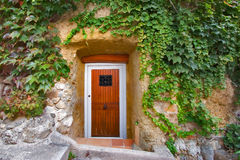 Door in a wall. A door in the ancient stone house in a wall covered by twisted plants stock photo