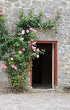 Door and wall Royalty Free Stock Images