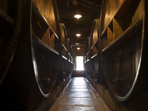 Door wine open. Very large wine barrels in two rows making a path to the exit Stock Photos