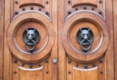 Door with a wolf head. The door with a wolf head royalty free stock photos