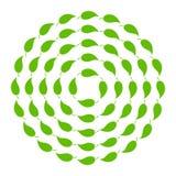 Doorbladert in de verschillende diameter van de cirkelvorm Diverse ronde kaders voor eco progect Vector illustratie vector illustratie