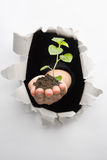 Doorbraak in milieuinnovatie stock foto