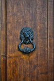 Doorknob with lion Stock Photos
