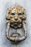 doorknocker Fotografia de Stock