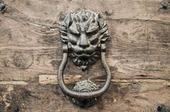 Doorknocker on allwood door. Stock Image