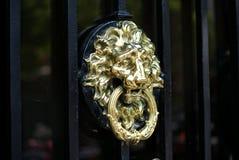 Doorknocker Lionhead Стоковое Изображение