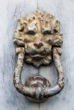 Doorknocker. A rusty lion style doorknocker on wood door Stock Photography