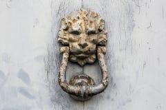 Doorknocker. A rusty Lion Style Doorknocker on woor door Royalty Free Stock Photos
