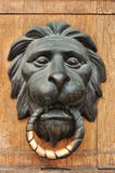 Doorknocker With Head Of Lion Stock Photography