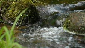 Doornemend water stenen stock video