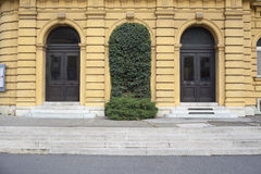Doors covered with ivy Stock Photography