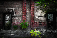 Doors in a desolate industrial building Royalty Free Stock Image
