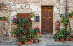Doors with flowers in Spello Stock Photography