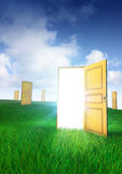 Doors of Opportunity. Multiple doors to choose, one leads to opportunity Stock Images