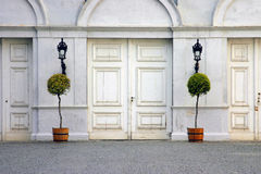 Doors with plants Royalty Free Stock Photo