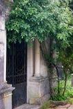 Doors and a rosebush Stock Photography