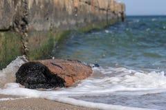 Doorstaan en gebrand drijfhout op de kust dichtbij een steenpijler royalty-vrije stock fotografie