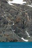 Doorstaan grijs rotsgezicht met oranje en witte minerale aders, sneeuwflarden, en ijzig blauw water, Drygalski-Fjord, Zuid-Georgi stock fotografie