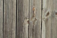 Doorstaan hout Royalty-vrije Stock Fotografie
